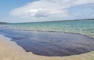 Óleo encontrado nas praias do Nordeste vem de 3 campos da Venezuela, diz Petrobras