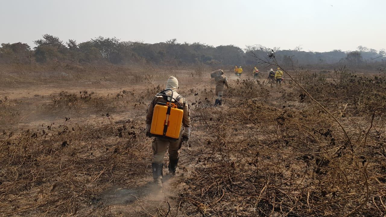 Governo desbloqueia recursos para o combate ao desmatamento na Amazônia