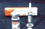 Lote com insumos para produção de 14 mi de doses da Coronavac chega ao Brasil
